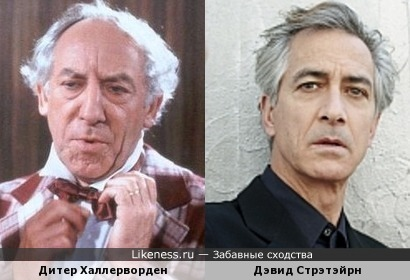 Дитер Халлерворден и Дэвид Стрэтэйрн