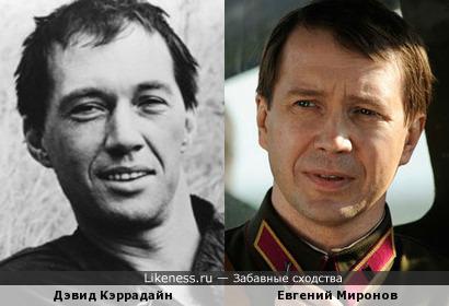 Евгений Миронов похож на молодого Дэвида Кэррадайна