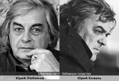 Любимов и Коваль чем-то похожи