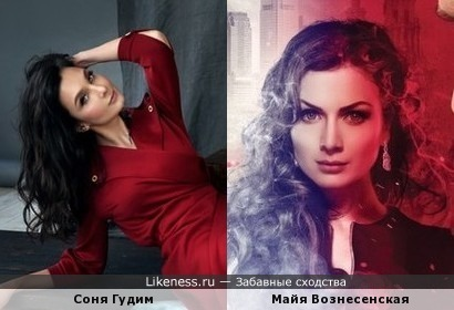 Блогер жж Соня Гудим похожа на Майю Вознесенскую