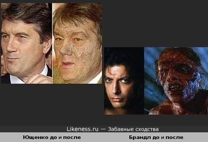Ющенко превращается в муху?!!