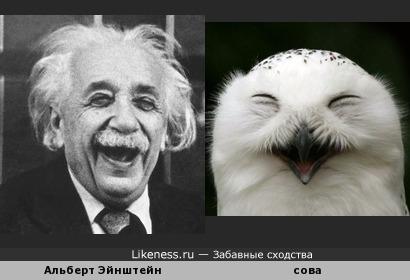 Сова-физик смеющаяся) (Likeness for Sovunya)