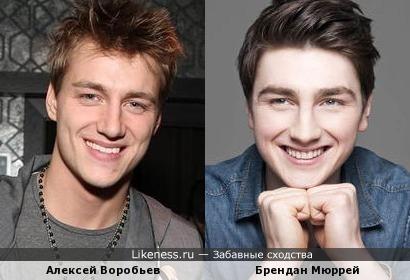 Алексей Воробьев похож на Брендана Мюррея