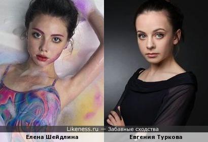 Елена Шейдлина похожа на Евгению Туркову