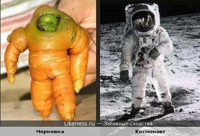 http://img.likeness.ru/uploads/users/230/carrot_spaceman.jpg