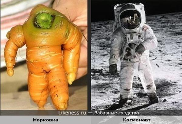 Морковь похожа на космонавта