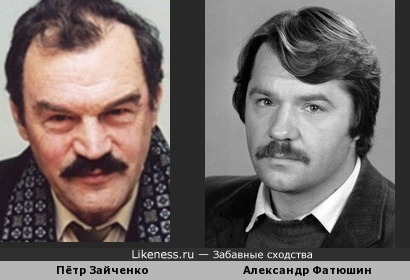 Александр Фатюшин смахивает на Пета Зайченко