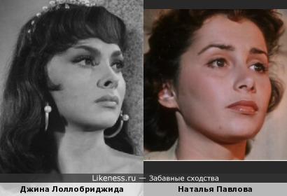 Наталья Павлова похожа на Джину Лоллобриджиду