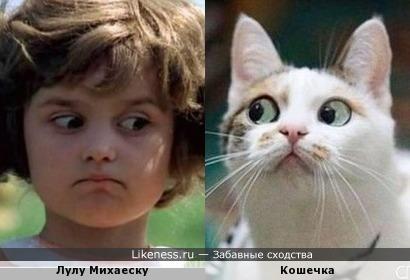 Детей и животных переиграть нельзя :)
