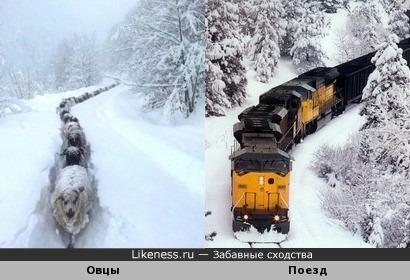 Зимний экспресс