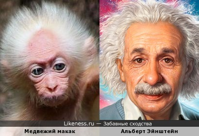Чуть похож я на Эйнштейна, только всё же не Эйнштейн я!