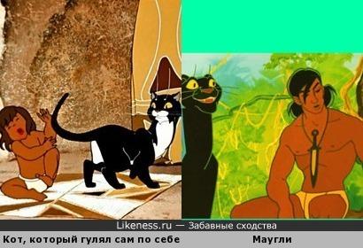 Кот, который гулял с... Маугли