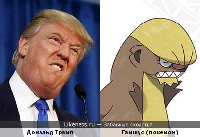 Дональд Трамп похож на покемона Гамшуса