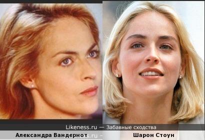 актрисы Александра Вандернот и Шарон Стоун похожи