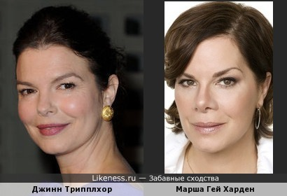 Марша Гей Харден и Джинн Трипплхорн похожи
