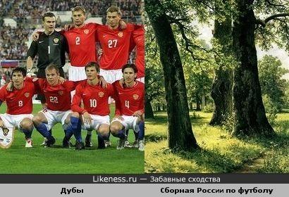 Сборная России по футболу похожа на дубы