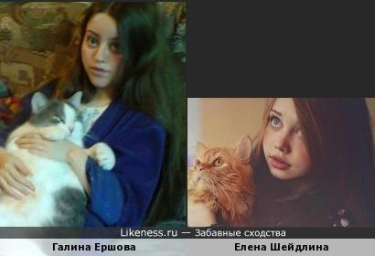 Елена Шейдлина