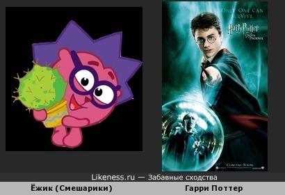 Ёжик из Смешариков похож на Гарри Поттера