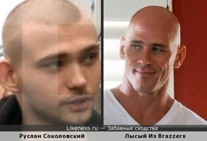 Соколовский похож на лысыго из Brazzers