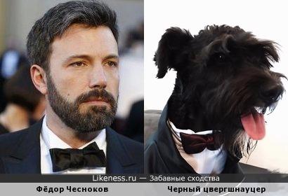 Фёдор Чесноков похож на черного цвергшнауцера.