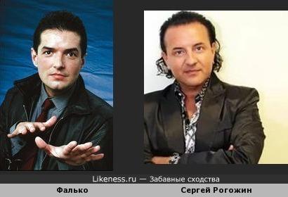 Фалько и Сергей Рогожин очень похожи