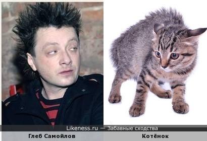 Прическа Глеба Самойлова похожа на шерсть испуганного кота и взгляд тот же