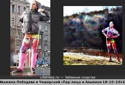 Альмина Лебедева и Чеширский кот... Пар-лицо и гремлин-пар