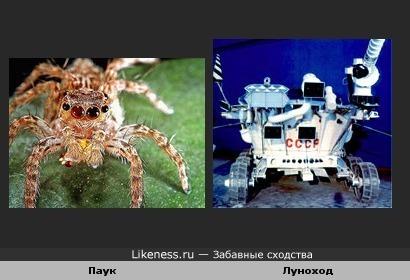 Копирование человеком природы 2.