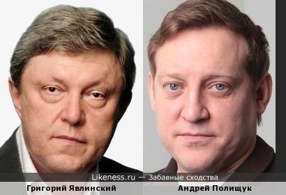 Григорий Явлинский похож с Андреем Полищук