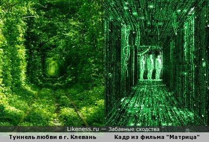 """Туннель любви в городе Клевань, (Украина) похож на кадр из фильма """"Матрица"""""""