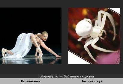 Если бы человек-паук был женщиной...
