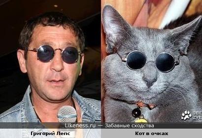 Кот в очках похож на Григория Лепса