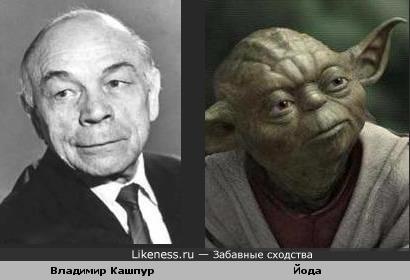 Владимир Кашпур похож на Йоду