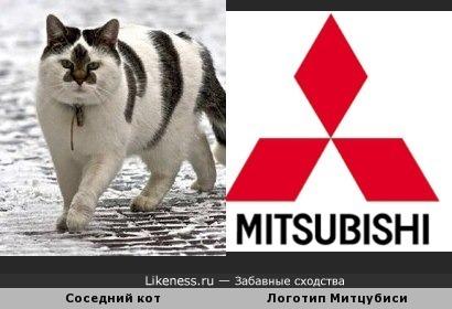 Соседский кот похож на логотип Митцубиси