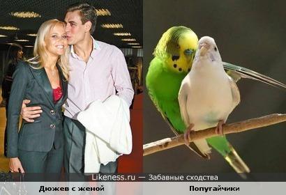 Люди, как птицы...