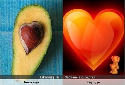 Косточка авокадо похожа на сердце