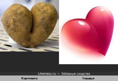 Картошка похожа на сердце