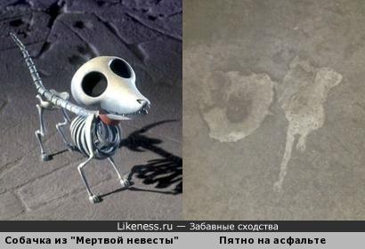 Пятно на асфальте напомнило собачку :)