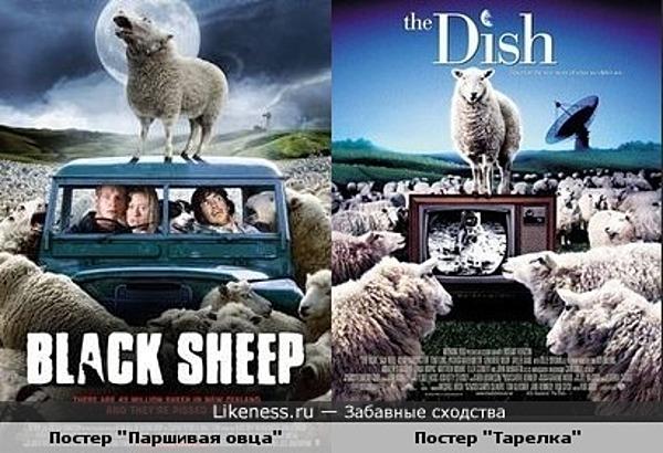 """Постер """"Паршивая овца"""" похож на постер """"Тарелка""""."""