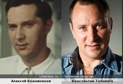 Тополага похож на Кожевникова