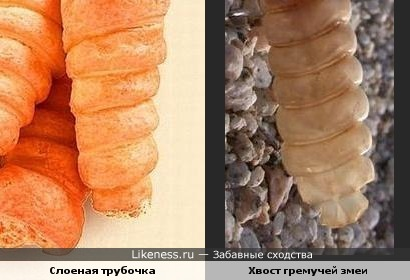 Слоеная трубочка похожа на хвост гремучей змеи