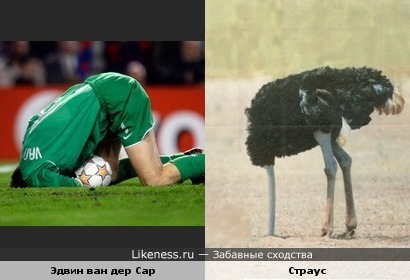 Футболист похож на страуса