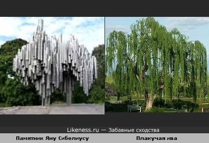 Памятник композитору Яну Сибелиусу похож на плакучую иву