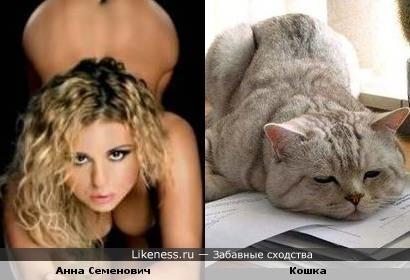 Анна Семенович и кошка