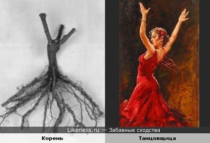 Корень растения похож на танцовщицу