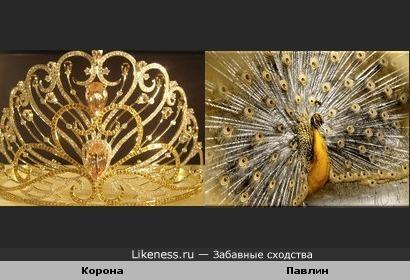 Корона напомнила павлина