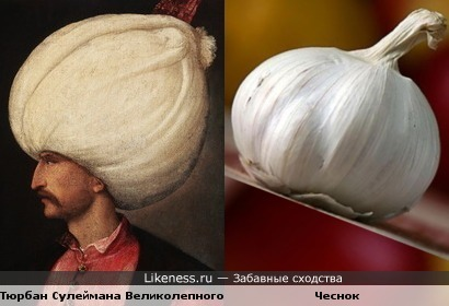 Тюрбан Сулеймана Великолепного похож на чеснок