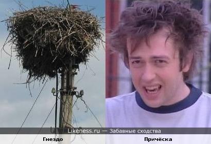 Гнездо и причёска Окана Ялабыка