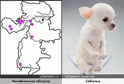 Карта Челябинской области похожа на собачку