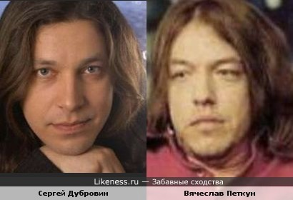 Сергей Дубровин и Вячеслав Петкун похожи